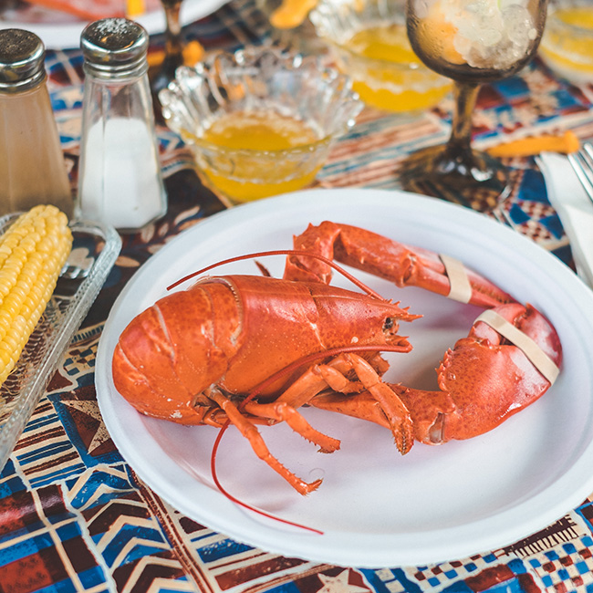 Eat All The Lobster in Halifax