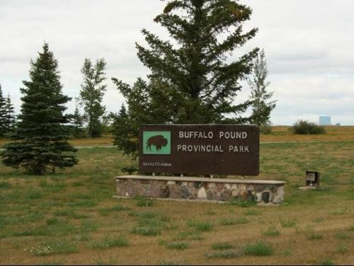 Buffalo Pound Provincial Park in Moose Jaw